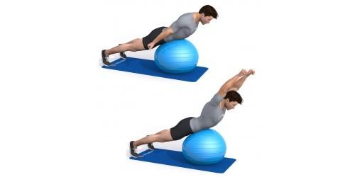 بدنسازی - حرکت ورزشی تعادل، بلند کردن دست- توپ تمرین