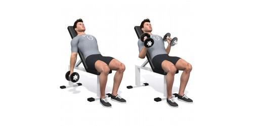 بدنسازی - حرکت ورزشی جلو بازو چکشی بر روی میز شیب دار - دو دمبل