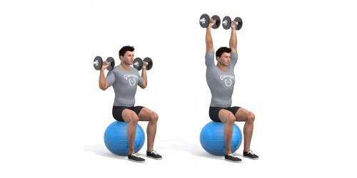 بدنسازی - حرکت ورزشی پرس سر شانه نشسته- دو دمبل- توپ تمرین